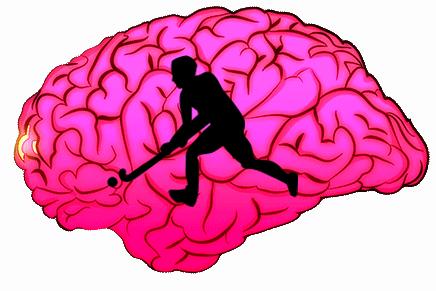 hockey on the brain