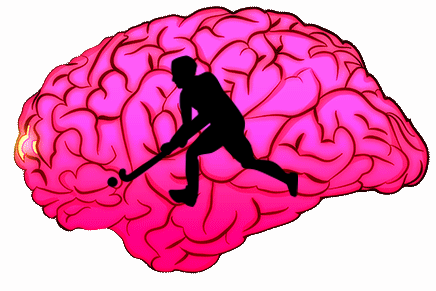 hockey on the brain